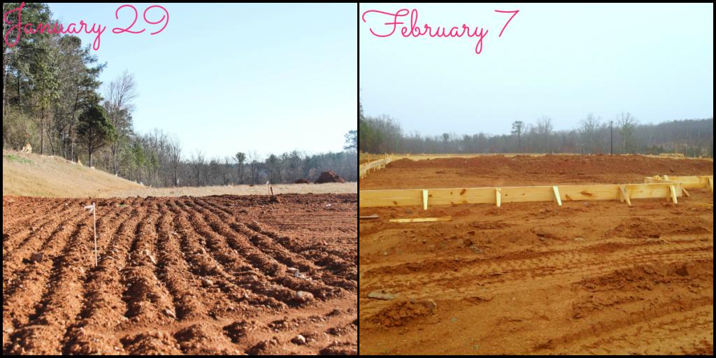 Week 1 collage blog