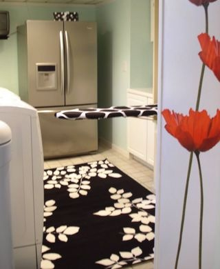 rug and ironing board pad