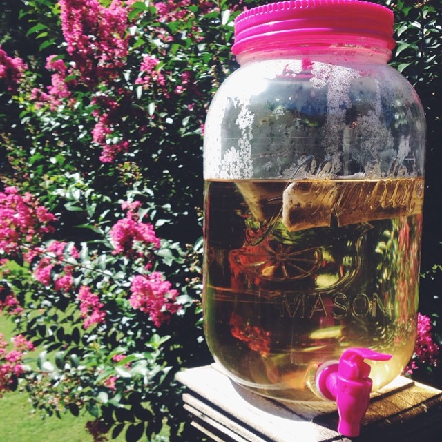 Brewing Sun Tea with Bigelow Green Tea. #TrendTea #shop #MimiBlogs