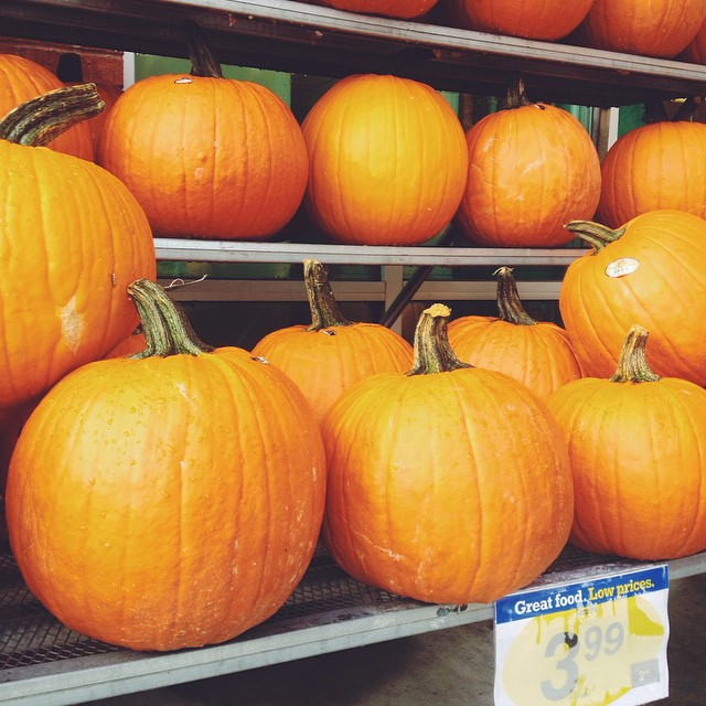 Is it too early? I'm asking for a friend ?*fist pumps* #lovefall #pumpkins