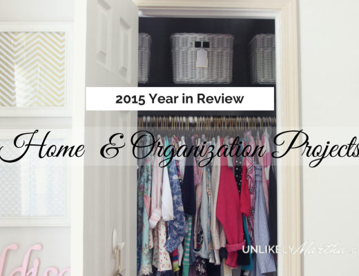 2015 Year in Review home and organiation revised